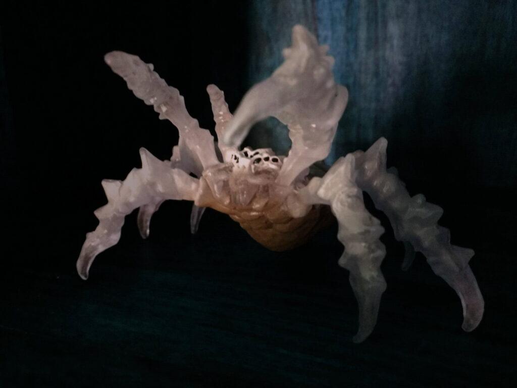 Riesenspinnen in den Wellenechohöhlen
